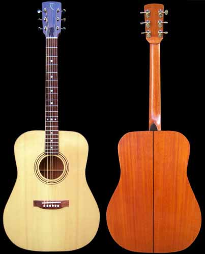 D-style acoustic guitar overview
