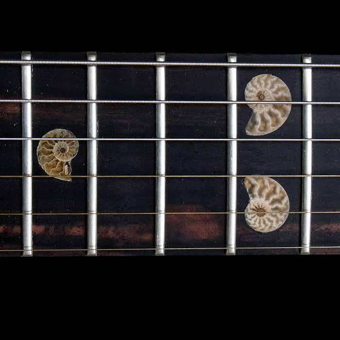 #64 psiliste elektrische gitaar toets inleg