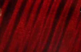 detail van de custom rode lak